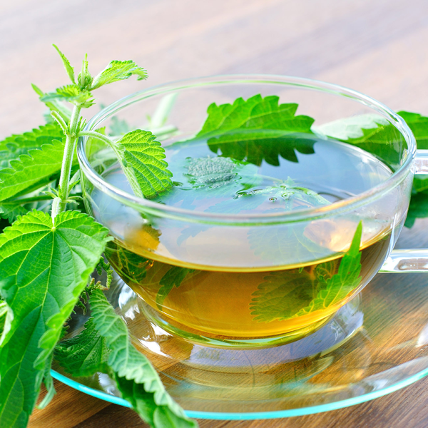 Nettle Tea Can Be Good!