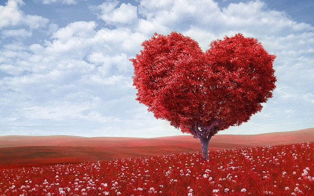 Romancing the Soul: Writing your Love Story