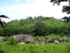 Casa Brujula land
